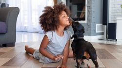 How To Adopt A Dog When You Have Kids, According To