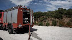 Πυρκαγιές σε Μεσσηνία και Κρυονέρι. Ο χάρτης πρόβλεψης κινδύνου πυρκαγιάς σε όλη τη