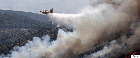 Φάκελος Δασοπυρόσβεση: Πυριτιδαποθήκες τα δάση εν μέσω καύσωνα και ελλείψεων σε