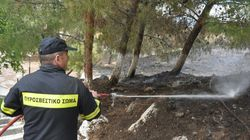 Μυτιλήνη: Υπό μερικό έλεγχο η μεγάλη φωτιά στην περιοχή του Καρά