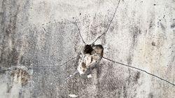 Σφαίρα καρφώθηκε σε τοίχο σπιτιού στο Μενίδι. Δεν τραυματίστηκε το 14χρονο κορίτσι που ήταν στο