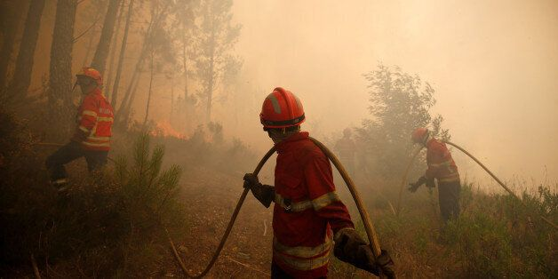 Firefighters work to put out fire during a forest fire in Capelo, near Gois, Portugal, June 21, 2017....