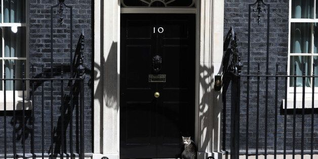 Larry, the Downing Street cat, a brown and white tabby rehomed from Battersea Dogs and Cats Home, sits...