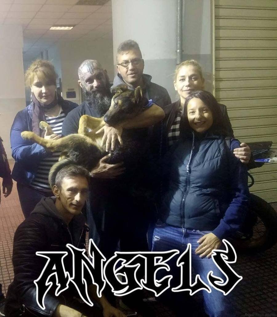 Παναγιώτης Μηλάς - Ομάδα Angels: «Αυτούς που κακοποιούν ζώα θα έπρεπε να τους ξερνάει η