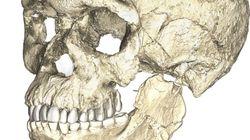 Οι ρίζες του Homo sapiens: Ανακαλύφθηκαν στο Μαρόκο τα αρχαιότερα απολιθώματα του σύγχρονου
