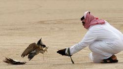 Κατάρ-Σαουδική Αραβία, μια κρίση 22 ετών με στόχο την ανεξαρτησία που εξελίχθηκε σε μάχη για την κυριαρχία στον αραβικό