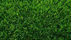 Το πρώτο Μεγάλο Πράσινο Σημείο στην Αττική στον δήμο