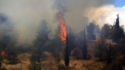 Υπό μερικό έλεγχο η πυρκαγιά στους Αγίους Θεοδώρους Κορινθίας. Ένας νεκρός και δύο τραυματίες ο