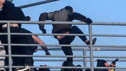 Για εκτεταμένα επεισόδια η δίωξη, κινδυνεύει με -6 ο ΠΑΟΚ, με -3 απειλείται η