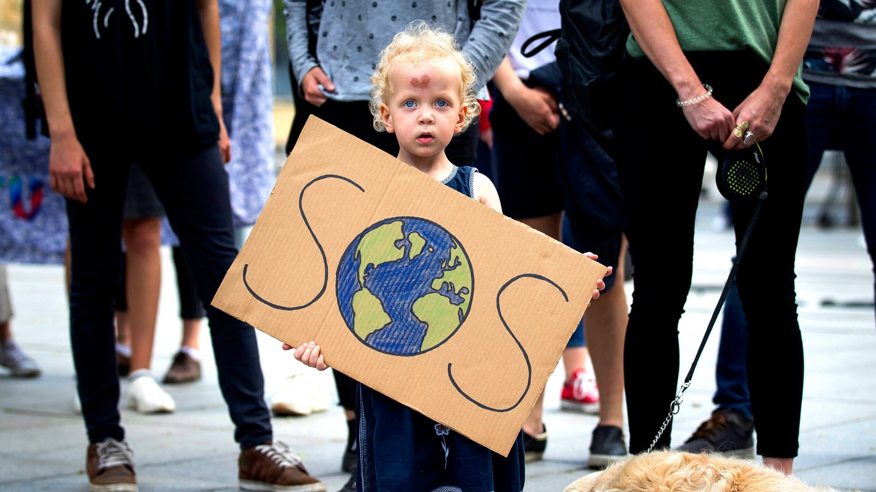 Global Climate Strike 2019: 11 Things To Do If You Can't Attend