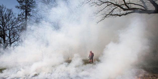TORONTO, ON - DECEMBER 31 - The City conducted a prescribed burn at Lambton Arena as part of the City's...