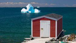 Τεράστια παγόβουνα πλέουν ανοιχτά των ακτών του Καναδά και προσφέρουν ένα μαγευτικό