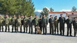 Ο ήρωας του ελληνικού στρατού: O σκύλος που βραβεύτηκε για την ιδιαίτερη προσφορά