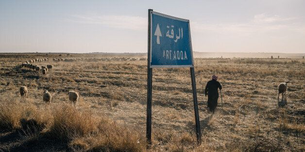 AIN ISSA, SYRIA, NOV 22: A shepherd passes by a sign indicating the direction to Raqqa city. (Photo by...
