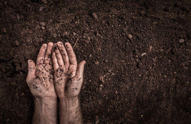 Ispra, consumo di suolo inarrestabile: -14 ettari al