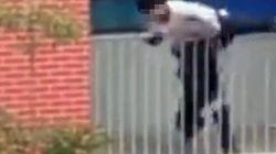 Βίντεο: Καθηγητής σώζει μαθητή που αποπειράθηκε να πέσει από μπαλκόνι του τετάρτου
