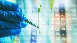 «Μεγάλα Δεδομένα» στην Κλινική