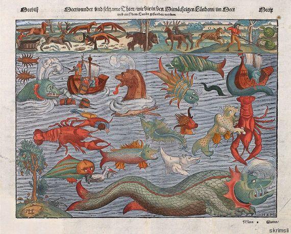 Στην Ισλανδία υπάρχει ένα μουσείο όπου μπορείτε να μάθετε τα πάντα για τα θαλάσσια