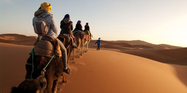 Anonymous guide leads camels with tourists riding into setting sun in Sahara