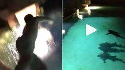 Βίντεο: Μεθυσμένος άνδρας πέφτει σε πισίνα με