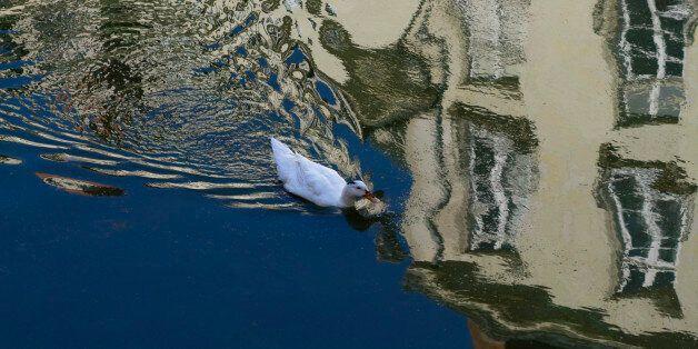 Μυστήριο με την εξαφάνιση τετραμελούς οικογένειας στην Γαλλία. Ποια η σύνδεση με μια παλιά υπόθεση