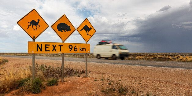A road sign at the start of the Nullarbor for kangaroos, wombats and camels. A van goes by in the