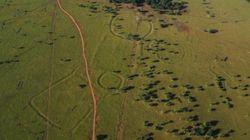Αρχαιολόγοι ανακάλυψαν ένα από τα πιο καλά κρυμμένα μυστικά στα τροπικά δάση του