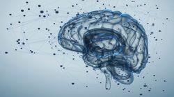 FiD: Η ηλεκτρονική εφαρμογή που βάζει την ψυχική υγεία σε καθημερινή
