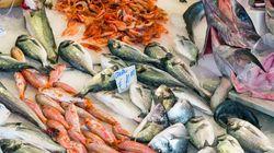 Fish Guide: Πόσο καλά γνωρίζετε τα ελληνικά