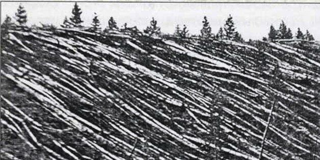 Photograph from the Tunguska event was a large explosion that occurred near the Stony Tunguska River,...