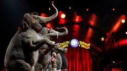Έπειτα από 146 χρόνια κλείνει το τσίρκο Barnum, το «μεγαλύτερο θέαμα στον