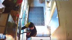 Άνδρας έκλεψε πύθωνα 200 δολαρίων κρύβοντάς τον στον παντελόνι