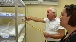 Αφιέρωμα στην προ του Άθω περιοχή: Το σύγχρονο τυροκομείο