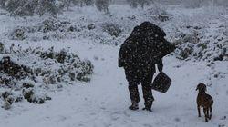 «Επιμένει» το ψύχος στη βόρεια Ελλάδα. Στα λευκά Χανιά και