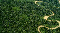 Στρατιωτικό αεροσκάφος της Βενεζουέλας χάθηκε στη ζούγκλα του