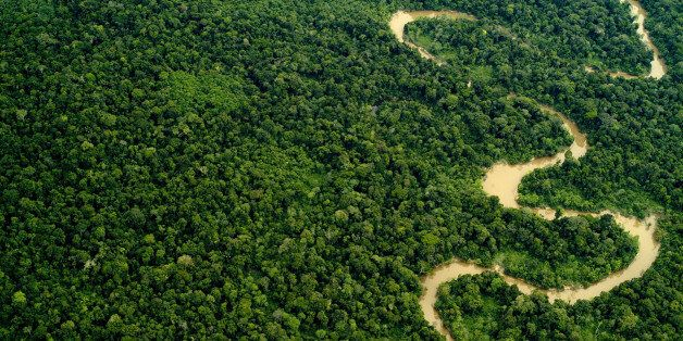 Aerial view of the Yavari Miri River and the Amazon Rainforest,
