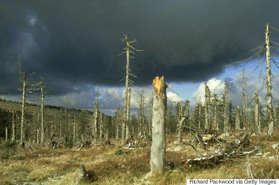 Nέα θεωρία συνδέει την προέλευση της ζωής με μία τεράστια καταιγίδα που διήρκησε 100.000
