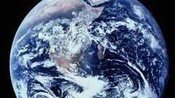 Έρευνα: Η 6η μαζική εξαφάνιση ειδών στον πλανήτη μας μέσα σε 50 χρόνια και το πρόβλημα