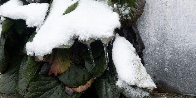 Προβλήματα λόγω χιονιού και ψύχους στη δυτική