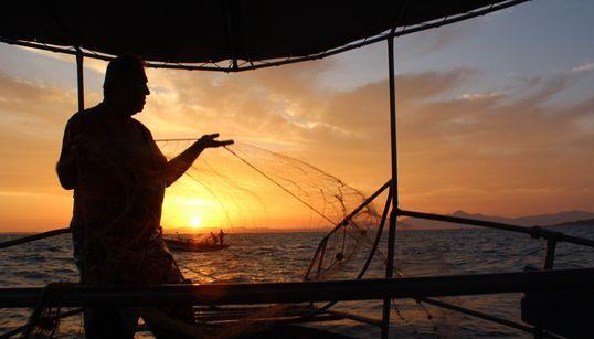 Ψαρεύοντας τον χρυσό του Αμβρακικού: Οι γαρίδες πουθρέφουν εκατοντάδες