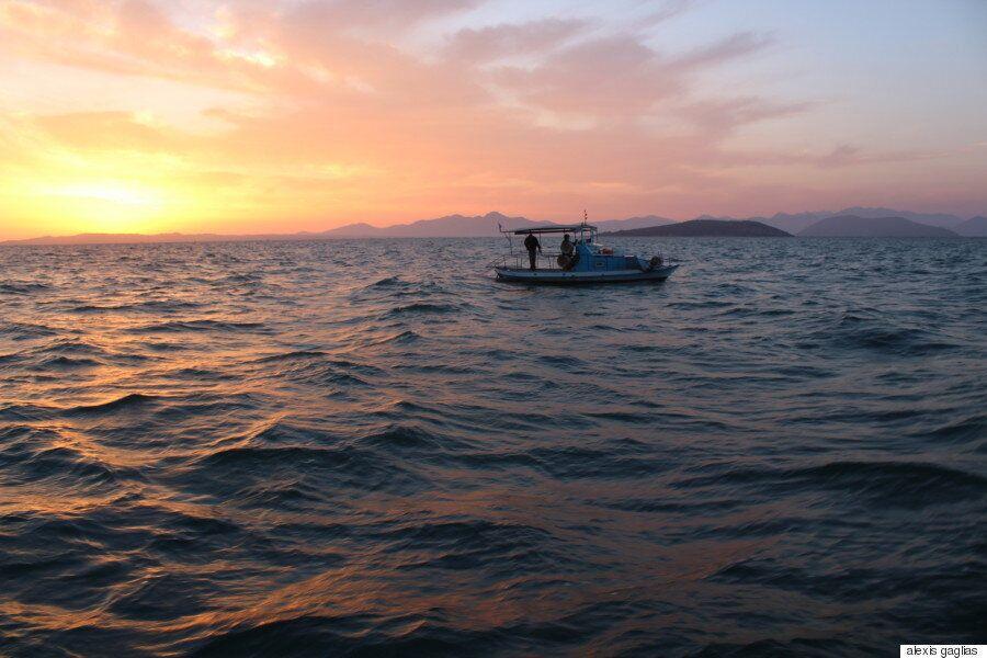 Ψαρεύοντας τον χρυσό του Αμβρακικού: Οι γαρίδες που θρέφουν εκατοντάδες