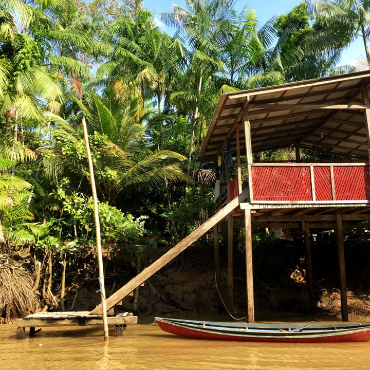 Ilha do Combu, no rio Guamá.