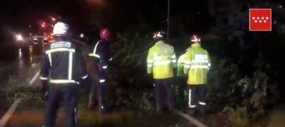 Servicios de emergencias trabajan en una zona afectada este