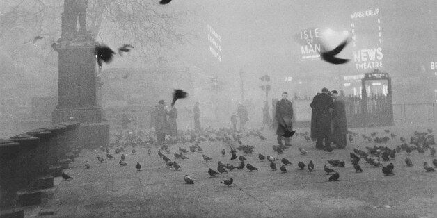 Pigeons swarm pedestrians as a thick fog shrouds Trafalgar Square and the rest of