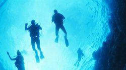 Τρεις μυστηριώδεις θάνατοι στον μεγάλο κοραλλιογενή ύφαλο. Ποιο το αόρατο, θανατηφόρο «τέρας» που