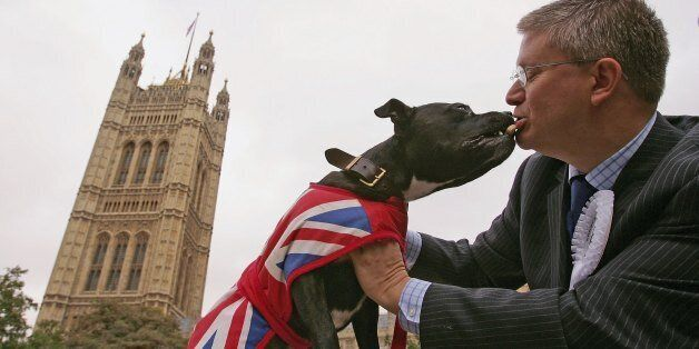 LONDON - OCTOBER 18:  Andrew Rosindell, conservative MP for Romford plays with Buster, his 3 year-old Staffordshire Bull Terrier during 'Westminster Dog of the Year 2006' on October 18, 2006 in London, England. The Westminster Dog of the Year competition was open to all dog-owning parliamentarians and for the first time, dog-owning political journalists. Dogs were judged on their good deeds and behaviour.  (Photo by Scott Barbour/Getty Images)