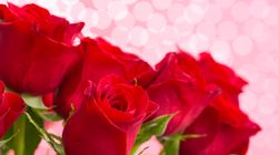 Δικαστικές περιπέτειες για ανήλικη επειδή πουλούσε τριαντάφυλλα χωρίς