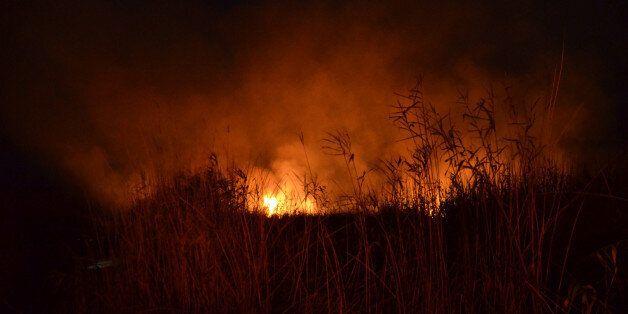 Υπό μερικό έλεγχο η πυρκαγιά στη