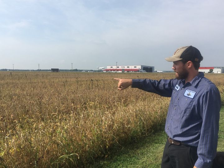 Will Hughes looks over 400 acres of organic soybeans at his family's farm in Janesville, Wisconsin. The farm has lost about $
