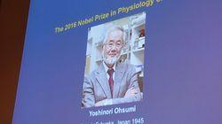 Στον Ιάπωνα βιολόγο Γιοσινόρι Οσούμι το Νόμπελ Φυσιολογίας και Ιατρικής